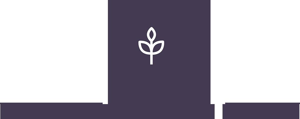 Wairarapa Food Story